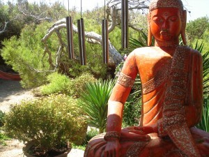 El mejor Curso de Formación de Yoga Nidra