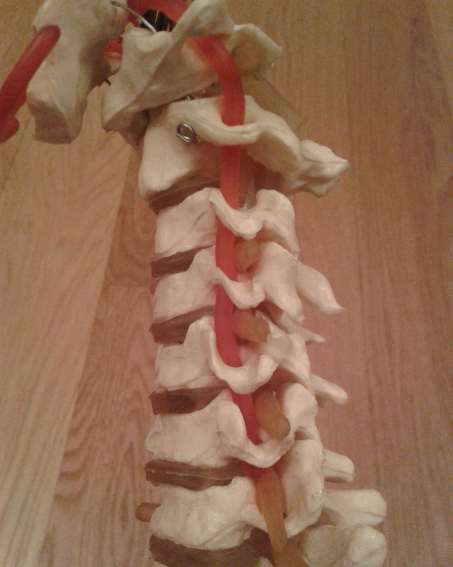 Ioga Pilates Barra Es saludable o No la Postura sobre la Cabeza