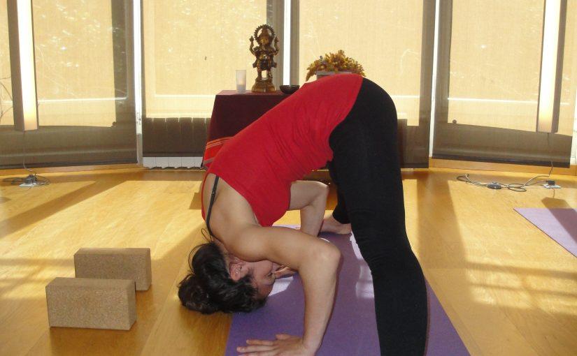 Barcelona Curso Especializacion Yoga Pilates Alineacion Postural